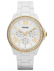 Fossil AM 4493